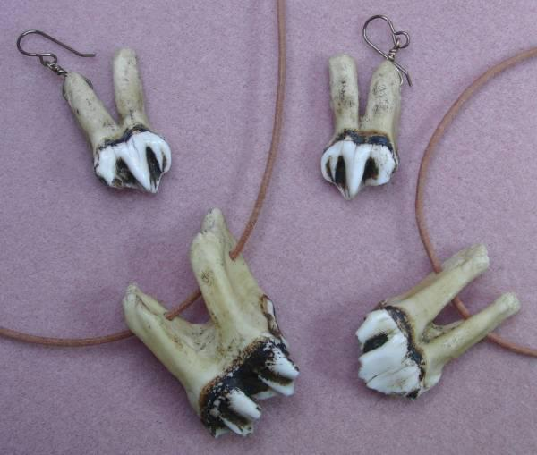 Moose Teeth Necklace and Earrings